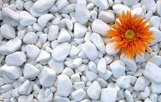 Шлайфани камъни от официалния вносител Едит 5 - Георги Семов - Внос и търговия с каменна сол и хранителни добавки за животни и строителни материали